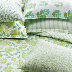Company Cotton™ Ella Percale Collection