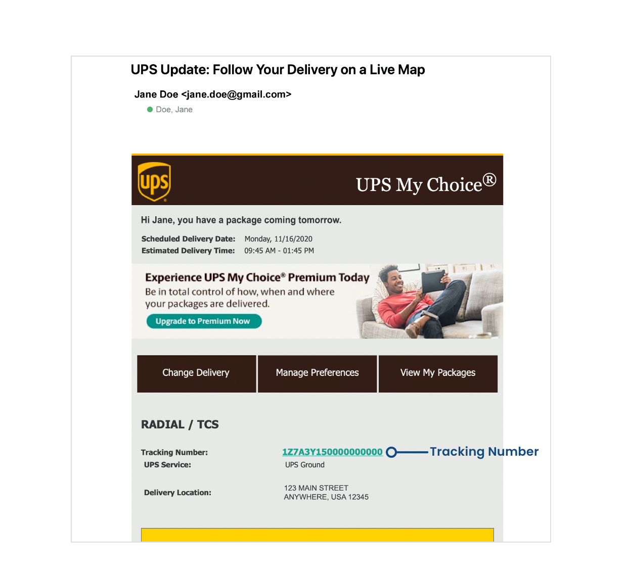Shipping Email